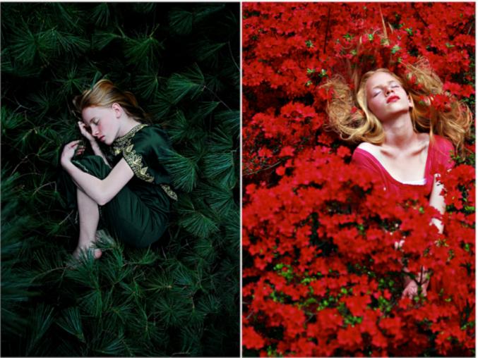 """Susannah Benjamin, """"The Bud and the Bloom"""", May 2009"""